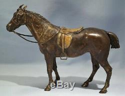 Franz Xaver Bergman Austrian Cold-painted Bronze Model of a Horse Circa 1900